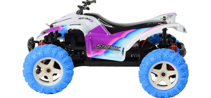 New Product Launch – GP TOYS S609 Rirder 5